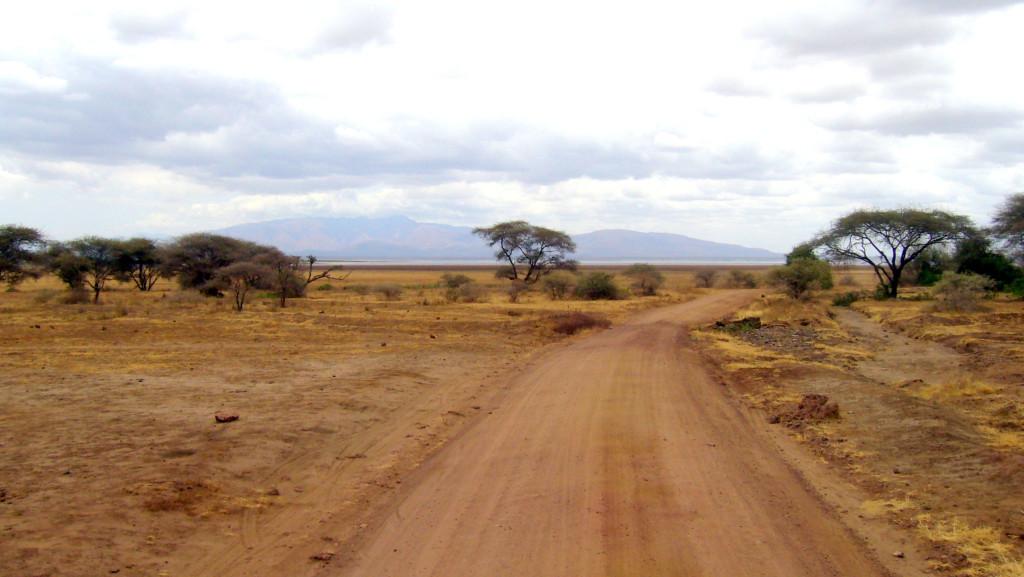 safari_savan2