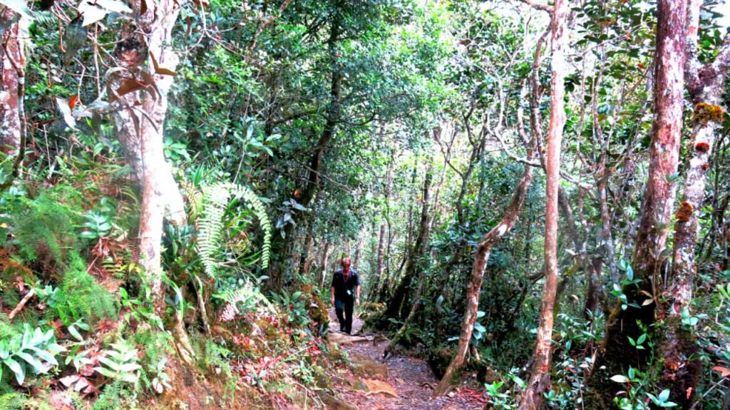 kinabalu_trekking