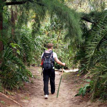 Trekking im High Island Reservoir