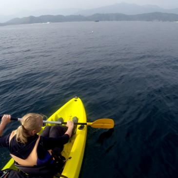 Kayaking um Sharp Island