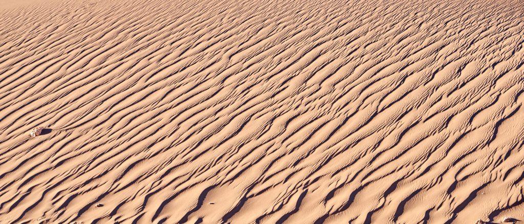 Adiós, desierto de Atacama.