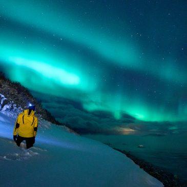Aurora Borealis über dem Fjord