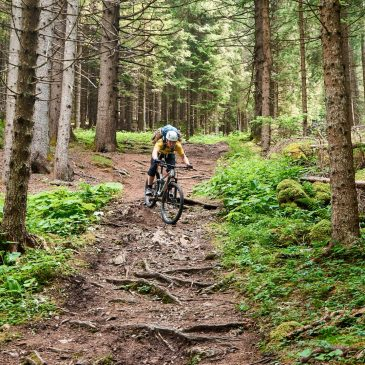 Mountainbiken in den Dolomiten – Pala bis Rosengarten