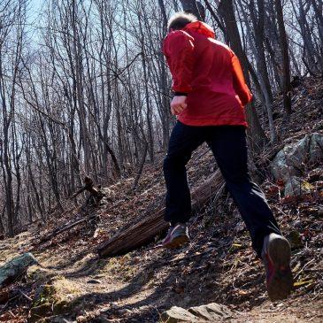 Trailrunning & Marathon in Virginia